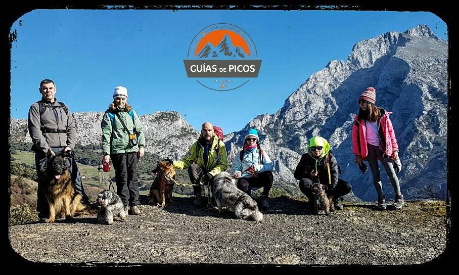CaniCamp Picos de Europa