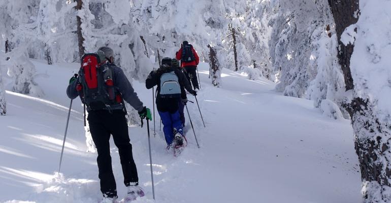 Rutas Raquetas de nieve