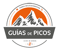 Guías Picos Europa