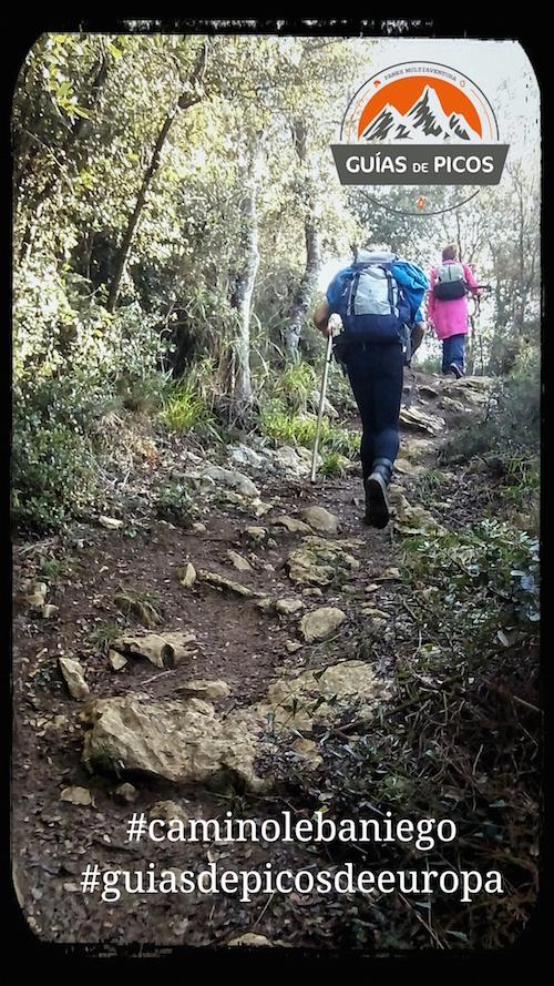 Senda Fluvial del Nansa. Camino Lebaniego 2017