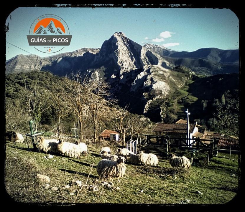 Trekking Desfiladero de LA Hermida Picos de Europa